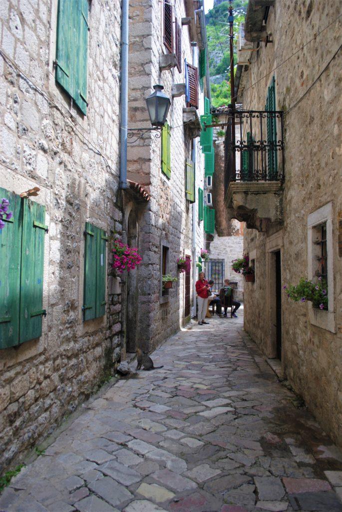 montenegro kotor stradina in pietra gatto