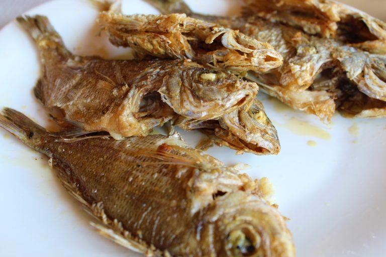 albania pesce fritto ristorante mare jalë beach